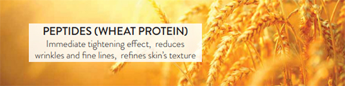 Peptides (Wheat Protein): Immediate tightening effect, reduces wrinkles and fine lines, refines skin's texture